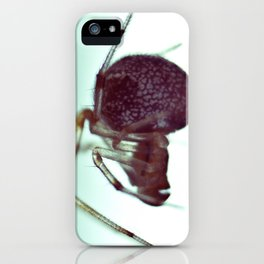 arachnoid iPhone Case