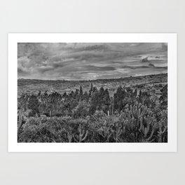 Ecuador Landscape Scene at Andes Range Art Print