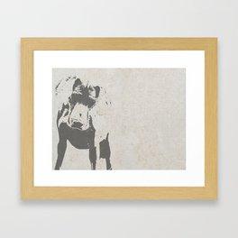 CURIOUS WEIMARANER Framed Art Print