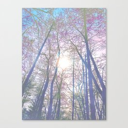Forest Bath Canvas Print