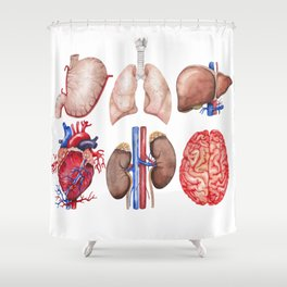 Watercolor organs Shower Curtain