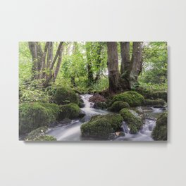 Romantic creek Metal Print