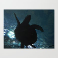 Deep Turtle Canvas Print