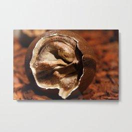 Dinosaur egg with embryo Metal Print