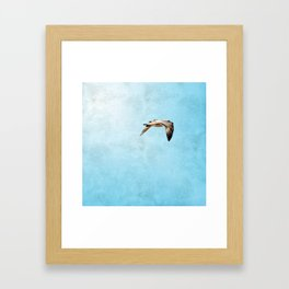 Bird in flight ;Into the Mystic Framed Art Print