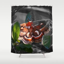 """""""As Daylight Ends"""" - Cecropia Moth Painting Shower Curtain"""
