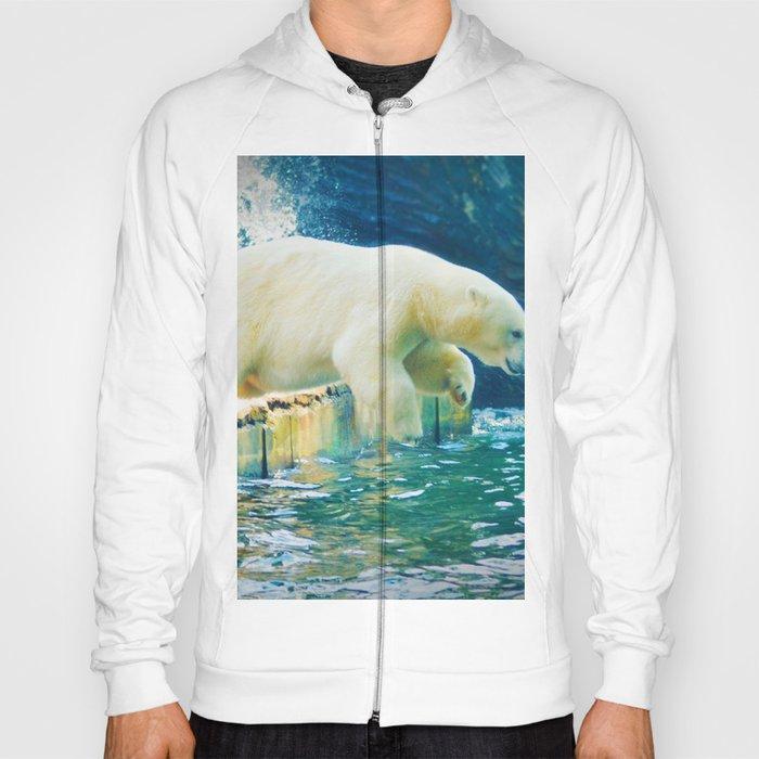 Polar Hoody