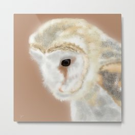 Pensive Barn Owl Metal Print