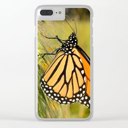 Monarch Butterfly Clear iPhone Case