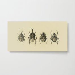 Beetle Morphology Metal Print