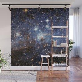 LH 95 stellar nursery in the Large Magellanic Cloud (NASA/ESA Hubble Space Telescope) Wall Mural