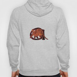 A is for Aardvark Hoody