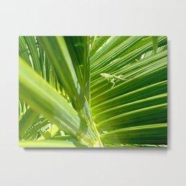 green gecko Metal Print