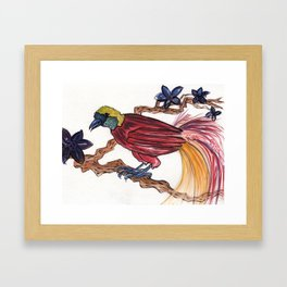 Bird of Paradise 2 Framed Art Print