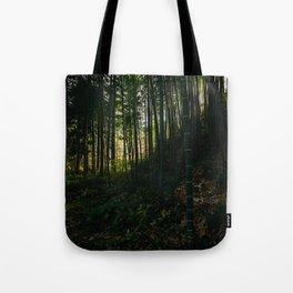 Kiso Valley Shadows Tote Bag