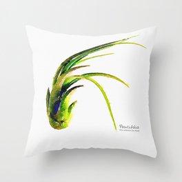 Tillandsia Paucifolia Air Plant Watercolors Throw Pillow