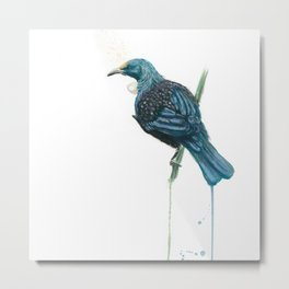 The Parson Bird aka Tui Metal Print
