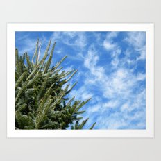 Christmas Tree and Blue Skies Art Print