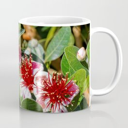 Beautiful Pineapple Guava / Guavasteen Flowers Coffee Mug