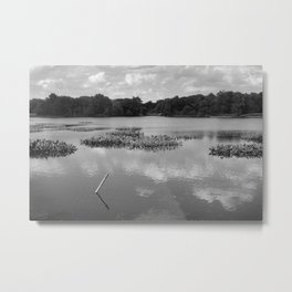simple, safe Metal Print