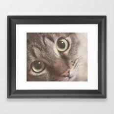 Kitty magic Framed Art Print