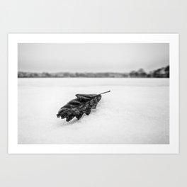 leaf in the snow Art Print