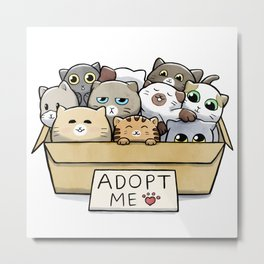Box full of cats for adoption Metal Print