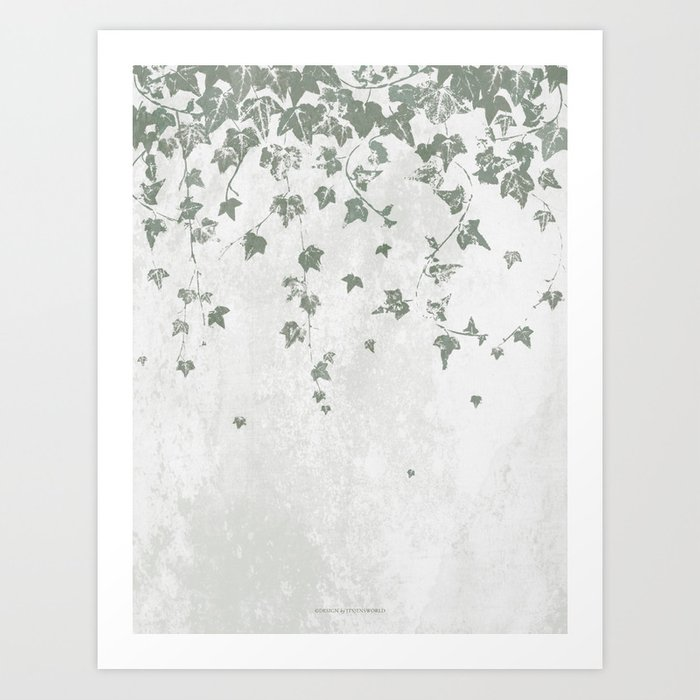 Gray Green Trailing Ivy Leaf Print Kunstdrucke