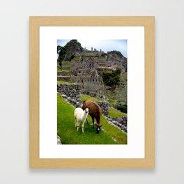 The Inhabitants of Machu Picchu Framed Art Print