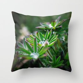 Lupines in Spring 3 Throw Pillow