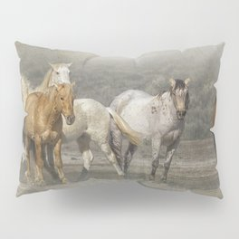 A Band of Horses Pillow Sham