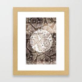XV-IV-XIV Floral  Framed Art Print