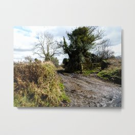 Muddy pathway in rural England Metal Print
