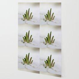 Peeking Through Wallpaper