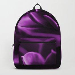 Succulent Plant In Violet Color #decor #society6 #homedecor Backpack