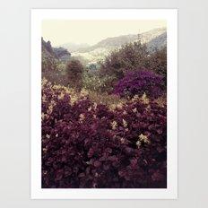 Highlands Flowers Art Print