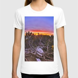 Nature colors T-shirt