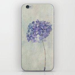 Beautiful Blue Hydrangea iPhone Skin