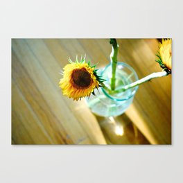 Tracy's Sunflower Canvas Print