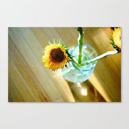 Tracy's Sunflower Canvas Print