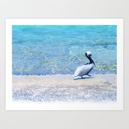 Strutting Pelican Art Print