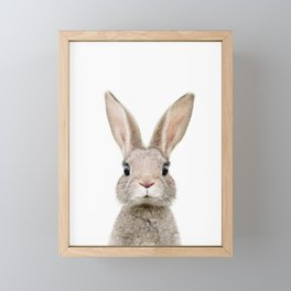 Baby Rabbit Portrait Framed Mini Art Print
