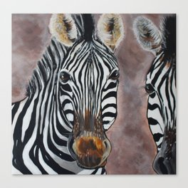 Zebras Posing Canvas Print