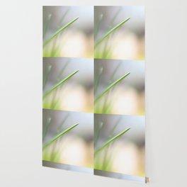 A Single Chive Wallpaper