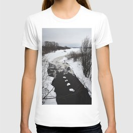 The approach of spring T-shirt
