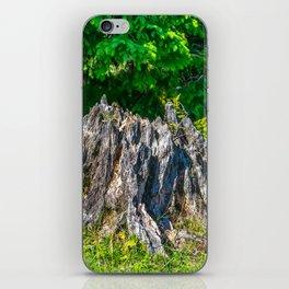 Tree Stump iPhone Skin
