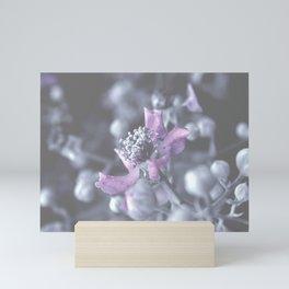 Wildflower Close-up Mini Art Print