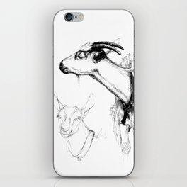 goats sk124 iPhone Skin