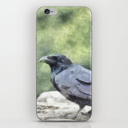 Crows Everywhere Are Equally Black iPhone Skin