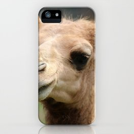 Baby Arabian Camel iPhone Case